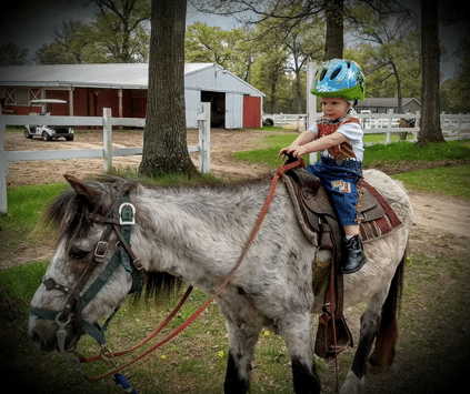A small boy is riding a pony while visting Wolf Lake Ranch.